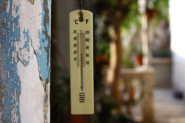 thermometer-70598_640